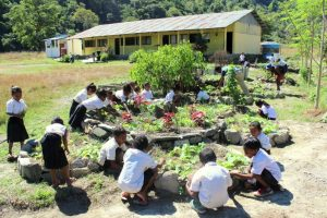 Timorese Permaculture Garden
